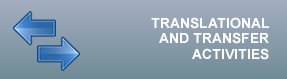 Translational and transfer activities